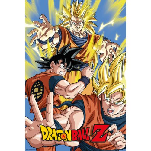 DRAGON BALL Z DBZ Goku FP4011 poszter