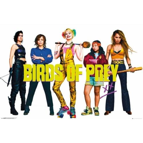 DC Comics - Birds of Prey - Ragadozó madarak Group poszter FP4877